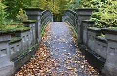 Bridge in the park (:Linda:) Tags: germany thuringia town hildburghausen park bridge