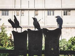 Mumbai - Bombay - Dharavi slum tour-40