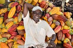 NP_Cacao_Guaviare20
