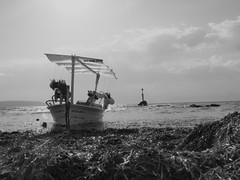 Torrent de s'alga (TONICOSTA) Tags: formentera