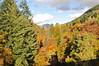 DSC_0481 (daviemoran1) Tags: autumn autumnal colours pitlochry garry river mountain trees sky scenic scotland highlands sunlight