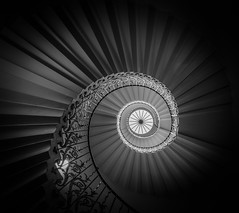 Tulip... (Aleem Yousaf) Tags: vignette stairs spiral selfsupporting geometric structure ornate iron wrought white black monochrome unitedkingdom london monument historical queenshouse greenwich photowalk wideangle fisheye d800 nikon photography indoor architecture staircase tulip