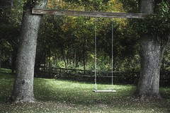 Silent Swing (Ken Mattison) Tags: swings farm rural outdoor nature swing summer fall autumn seasons serene quiet lightandshadows panasonic panasoniclumix fz1000 bluelotusfarm midwest heartland wisconsin usa