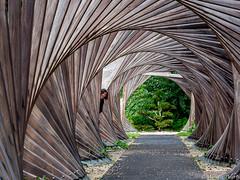 Les Jardins Mallet-Stevens (musette thierry) Tags: jardin garden malletstevens d600 nikon musette thierry bois jeux art architecture