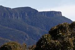 Mount William (blachswan) Tags: grampians grampiansnationalpark gariwerd gariwerdnationalpark nationalpark victoria australia mountwilliam