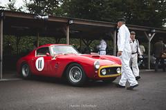 Ferrari 250 GT SWB/C (antoinedellenbach.com) Tags: circuit motorsport eos automotive automobiles automobile racecar sport course lightroom coche photography photographie vintage historic auto canon paddock pitlane carphotography worldcars england grcc goodwood revival ferrari 250gt swb gt legend kinrara swbc 6d 2470