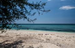 Beaches to remember (Vagabundina) Tags: gili lombok bali nusatengarra indonesia asia landscape seascape scenery water ocean beach waterscape sun clouds weather summer nikon nikond5300 dsrl green emerald transparent clear coral nature