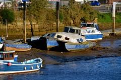 Trimaran (Sam Tait) Tags: whitby yorkshire england holiday boat sail sailing junk trimaran multihull multi hull ufo old abandoned neglected grp fiberglass