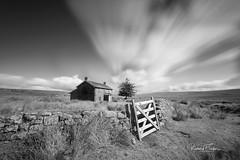 rushing clouds.jpg (taylorri40) Tags: dartmoor devon longexposure trees d810 nikon nunscrossfarm richardftaylor samyang samyang14mm september shadows sunlight