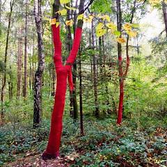 Wünsche - SüdpART 2 (tom_p) Tags: park munich sendling landart südpart monaco tree münchen bäume südpark bayern baviera enlight kunst bavaria
