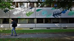 Gola Hundun / Bruxelles - 16 okt 2017 (Ferdinand 'Ferre' Feys) Tags: bxl brussels bruxelles brussel belgium belgique belgië streetart artdelarue graffitiart graffiti graff urbanart urbanarte arteurbano ferdinandfeys