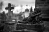 Tombe, cimetière de Colmar, France (Etienne Ehret) Tags: tombe grave cimetière graveyard colmar alsace france noir blanc bw black white bokeh ambiance canon 5d mark iii 50mm sériel f12