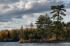 Autumn at the Lake (Keith Levit) Tags: nikond850 ontario canada autumn lakeofthewoods