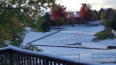 October 9, 2017 - Snow in Broomfield  (David Canfield)