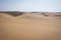 Rajasthan - Jaisalmer - Desert Safari with Camels-20