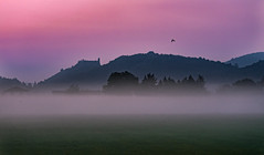 Alba d'autunno (erripollo) Tags: alba sunrise fog nebbia castle castello autunno autumn beautiful colors tree travel nature olympus omd omd5markii photography italy torino valsusa luce