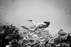 Freedive Boracay (niceholidayphotos) Tags: