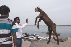 Varanasi - Ghats-9