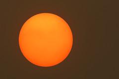 Sahara sand sun as Ophelia approaches (Nigel Blake, 15 MILLION views! Many thanks!) Tags: sahara sand sun sunset storm hurricane ophelia sky weird eerie light orange brown spooky weather forecast meteorology cloud solar event