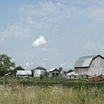 Farmyard thumbnail