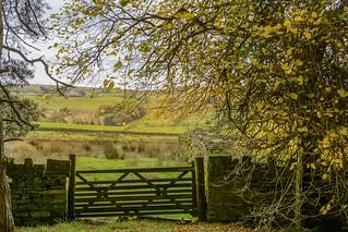DSC_0001 - Lancashire moorland