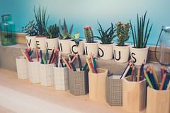 Velicious (Strasbourg) [explored 16-10-17] (Mathosse) Tags: deco life style color plant cactus restaurant 35mm
