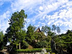 束の間の晴天。やさしさを、ありがとう。 (aozora.umikaze) Tags: japan nara yasashisa arigatou aozoranoiro nikon s3000