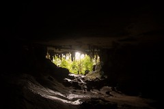 Niah caves. (SawardPhotography) Tags: