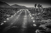 Lonely road, Lanzarote (Kelly's Eye Pics) Tags: lanzarotte bw blackandwhite noir road desolate empty void lonely alone unmade leading path pentax 1685mm