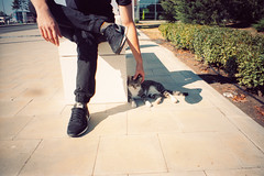 (ニノ Nino) Tags: 35mm film analog analogue olympus mju ii iii stylus epic kitty cat cats kittens gato nike internationalist sneakers trainers
