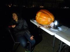 P1290060 - Copy (amiterangi1) Tags: jackolanterns halloween governorsisland newyorkharbor pumpkins