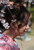 Maruyama-kōen   Sakura Girl (Toni Kaarttinen) Tags: japan 日本 japonia اليابان японія япония japó japonsko jaapan ژاپن japani japon xapón ιαπωνία יפן जापान japán jepang an tseapáin giappone 일본 japāna japonija јапонија japão јапан japonska japón hapon ประเทศญี่ปุ่น japonya nhật bản japanese kyoto kioto 京都 kyōto kyōtoshi temple shrine higashiyama ril woman kimono maiko geiko geisha maruyamakōen maruyamakoen maruyama koen park hanami sakura