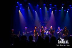 2017_10_28 Bosuil Battle of the tributebandsJOE_6857-Johan Horst-WEB