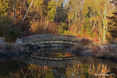Calm Reflection (rcss2800) Tags: garden water tree trees bridge outdoor outdoors reflection reflect forest wood grass