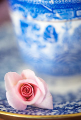 Rose and blues... (borealnz) Tags: rose macro china plate cup cecilebrunner pink blue delicate bud pretty