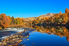 Reflections On The Payette River (http://fineartamerica.com/profiles/robert-bales.ht) Tags: gemcounty idaho mountain emmett sweet squawbutte scenic treasurevalley emmettvalley trees thebutte haybales beautiful awesome magnificent peaceful wow town butte gem river payetteriver southwesternidaho reflections water scenicbiway blue whitewater picturesque mountains payette riverphotography tributary robertbales snakeriver fallcolor fall autumn autumncolor