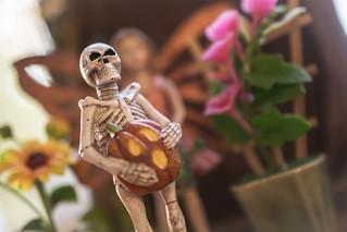 FAIRY GARDEN SKELETON - happy halloween 👻!