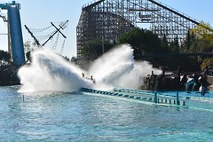 aquatica - europapark germany (khalid.lebdioui) Tags: europapark rollercoaster germany deutschland nikon flickr d5200 sun october halloween photo photography photographer europe landscape discovery nature autumn