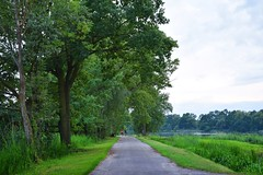 summer moods (JoannaRB2009) Tags: summer mood nature green tree trees pond ponds landscape view path road miliczponds stawymilickie lowersilesia dolnyśląsk dolinabaryczy polska poland