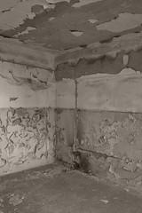 _MG_6449 (daniel.p.dezso) Tags: kiskunmajsa laktanya orosz kiskunmajsai majsai former soviet barrack elhagyatott urbex wall abandoned military base militarybase