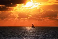 Sailing at sunset - Tel-Aviv beach (Lior. L) Tags: sailingatsunsettelavivbeach sailing sunset telaviv beach sea sailboat telavivbeach