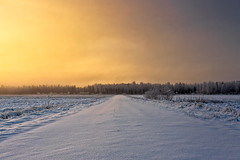 Snowy Road In The Winter Sunrise (k009034) Tags: 500px mist trees sky sunrise morning forest winter nature travel road snow fields woods agriculture tracks farming no people coldness nordic countries finland tranquil scene scandinavia copy space oulainen matkaniva destinations teamcanon