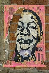Paper Boy (hotpotato70) Tags: brisbane cbd queensland australia street art pink hair face eyes wall graffiti poster lane color efex pro 4 canon 7d colour georgestreet paper man boy bricks