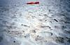 The End of Summer (Minchioletta) Tags: c41 analogicait lomographyandvintagecameras olympusxa fujisuperia200 beach spiaggia sand sabbia beachumbrella ombrellone