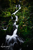 Gertelbach Wasserfälle (️️️️WarCat.) Tags: autumn nikon eau nature water automne longexposure couleur d3300 waterfall sigma cascade colors outdoors plantes tourism expositionlongue europe