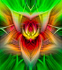 "Spiritual Twirl Art #21  - ""Tiny Orange Flower #1"" (FotoGrazio) Tags: waynegrazio waynesgrazio abstract abstractart art avantgarde beautiful color colors composition dream fantasy fineart fotograzio green lovely magic magical medication meditate mystical nirvana painterly photoeffect photomanipulation phototoart phototopainting psychodelic relax spirits spiritual surreal texture twirlart"