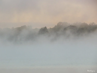 Morning Mist - Brume matinale