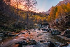 Alpe Devero in rosa (Torchia Marco) Tags: devero mountain fiumi autunno colori tramonto abete larici piemonte italia river nikond7200 10mm nikonclub alpi