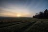 morningfields (Mange J) Tags: europe grums k3ii magnusjakobsson pentax sigma1020exdc sigma1020 sverige sweden värmland beauty blue clear field fog forrest green mist morning nature pentaxart sky sun sunrise tree wood värmlandslän se