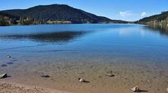Autumn at the Lake (Hugo von Schreck) Tags: hugovonschreck gérardmer lothringen frankreich france europe canoneos5dsr tamron28300mmf3563divcpzda010 lake see